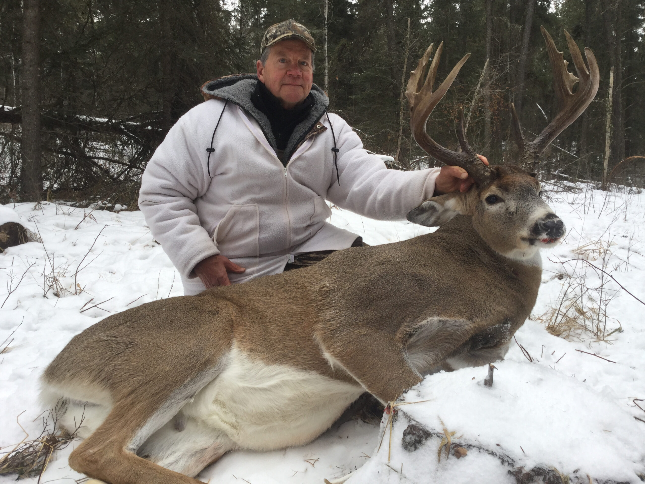 2019-17-whitetail-deer