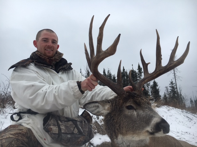 sk whitetail deer trophy - fuzz